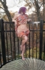 508-433-0810 Body Rub Thumbnail
